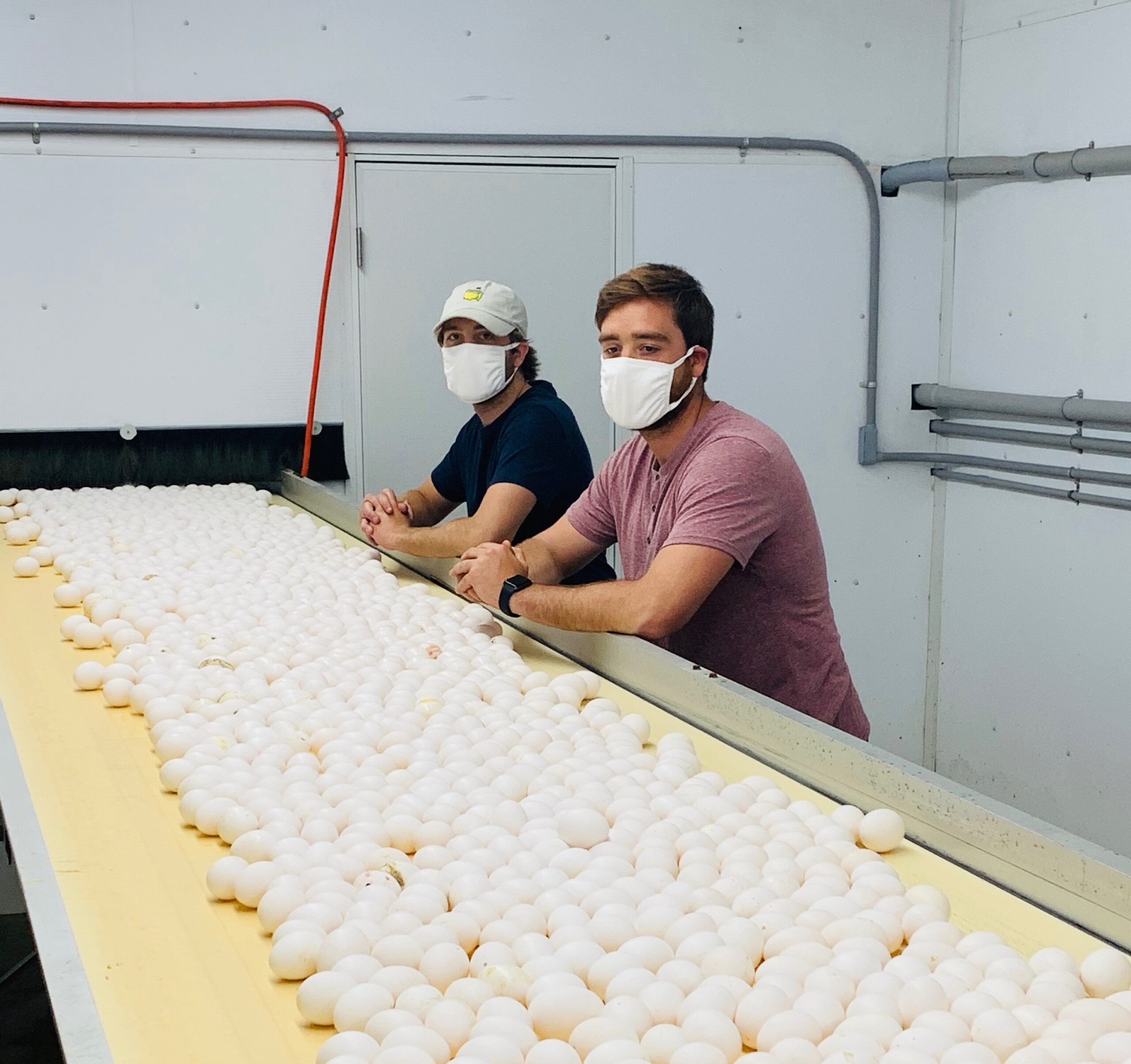 Ohio Egg Farmers Are Committed to Feeding Ohioans
